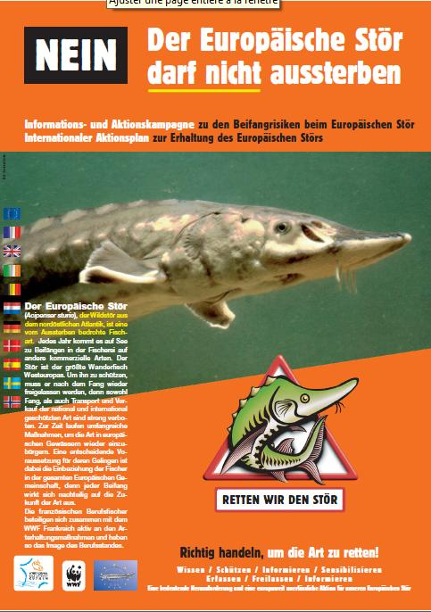 German Information leaflet